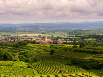 Valpolicella wine experience